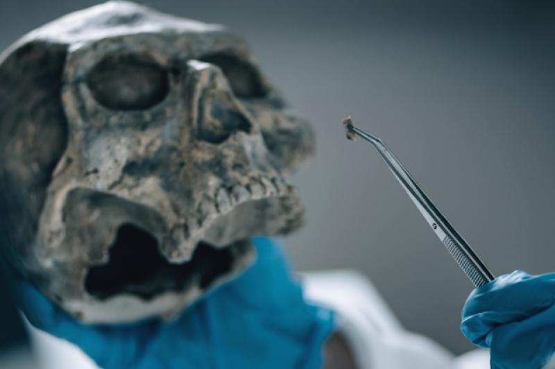 Odontologia é utilizada na perícia criminal e para identificação de cadáveres